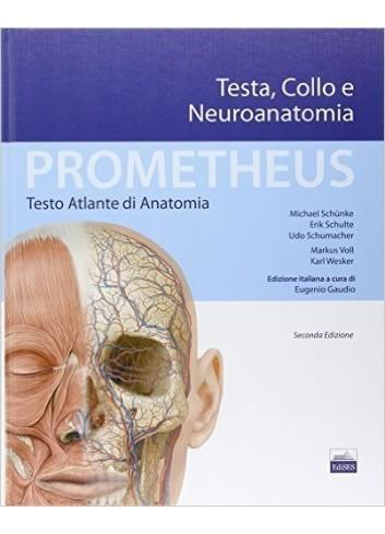 Prometheus - Testo Atlante di Anatomia - Testa, Collo e Neuroanatomia - M. Schünke, E. Schulte, U. Schumacher