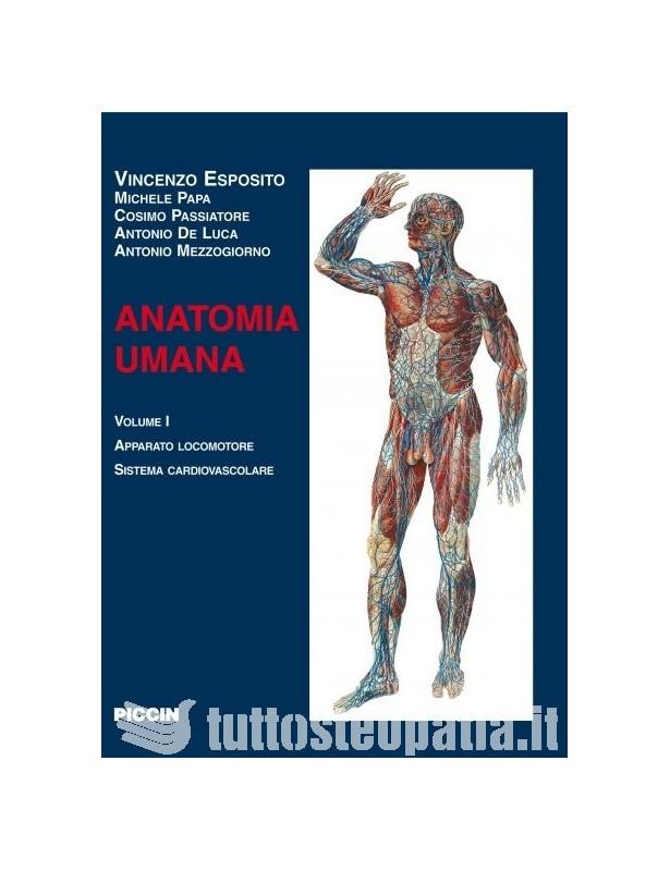 Anatomia Umana - Volume 1 - autori vari