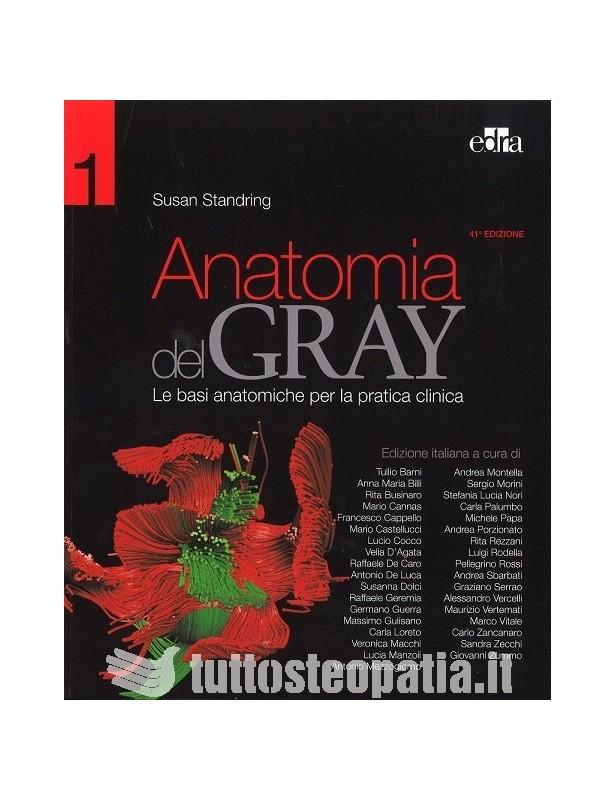 Anatomia del Gray (Volume  1 e 2) -...