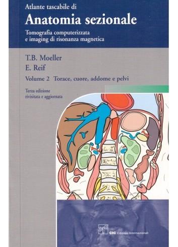 Atlante tascabile di Anatomia sezionale Volume  2 - Moeller T.B., Reif E