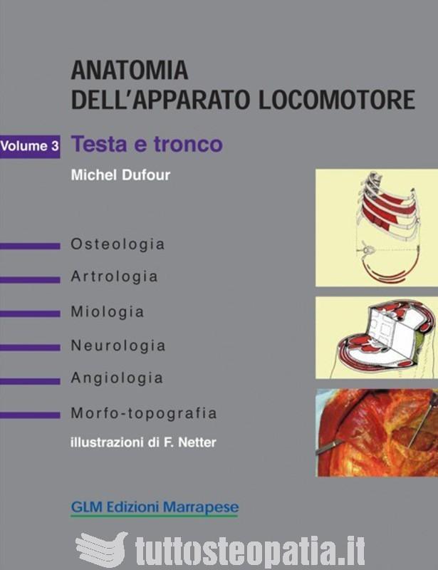 Anatomia dell'apparato locomotore -...