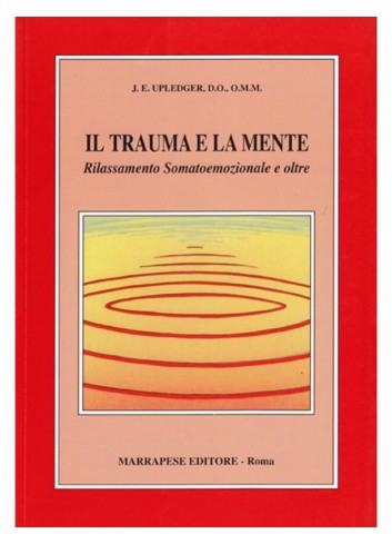 Il trauma e la mente - John...