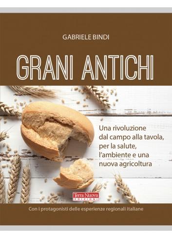 Grani antichi - Gabriele Bindi