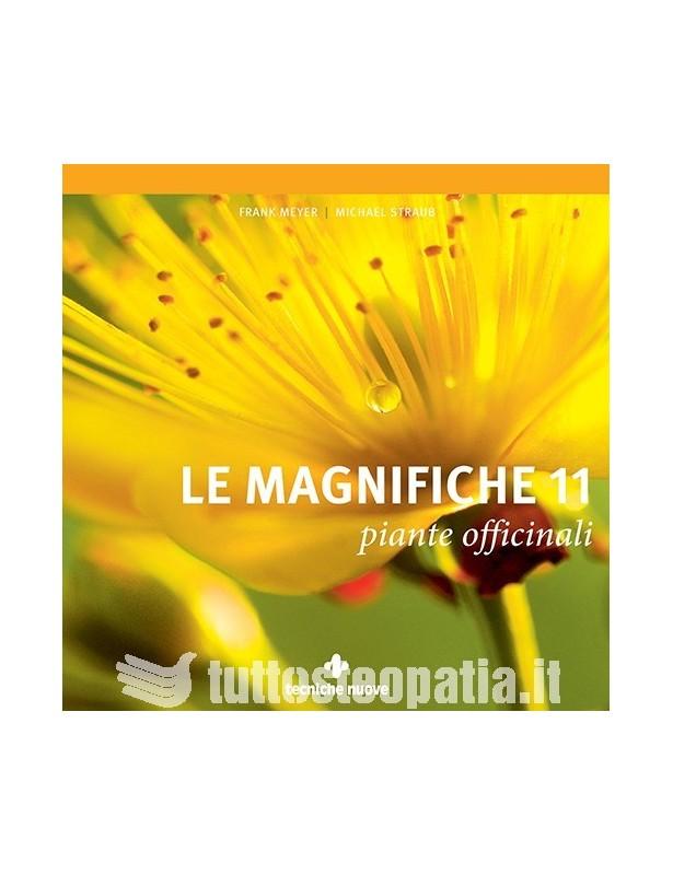 Le magnifiche 11 piante officinali -...