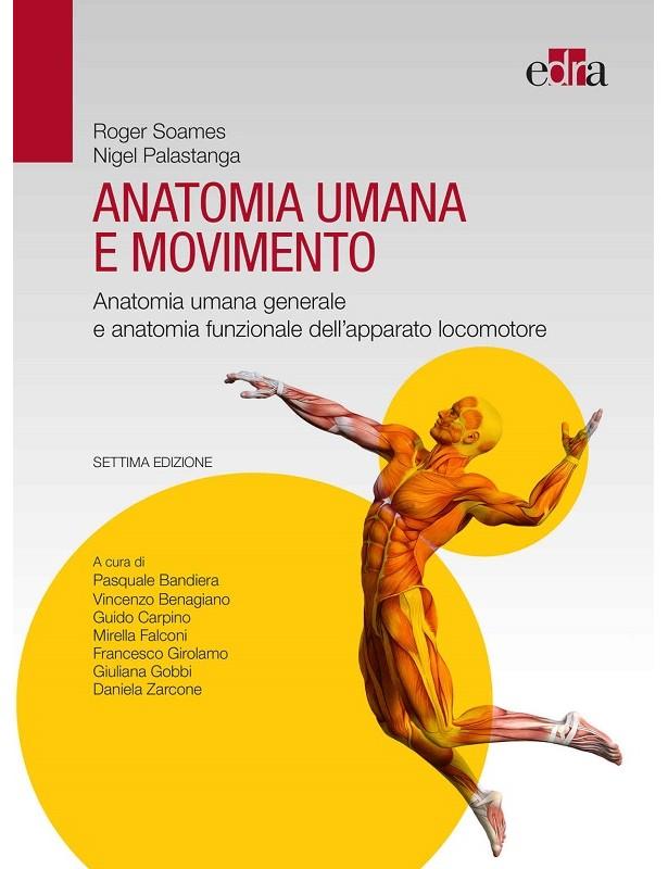 Anatomia umana e movimento - Settima...
