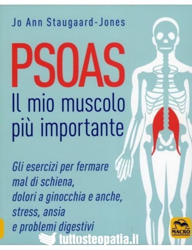 Psoas, Il mio Muscolo più Importante...