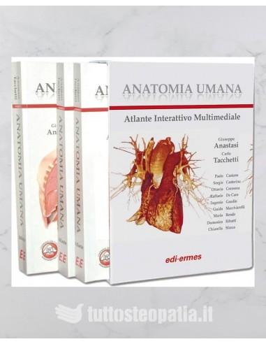 Trattato di Anatomia Umana (3 volumi)...