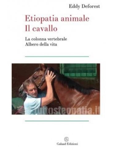 Etiopatia animale: il cavallo - Eddy...